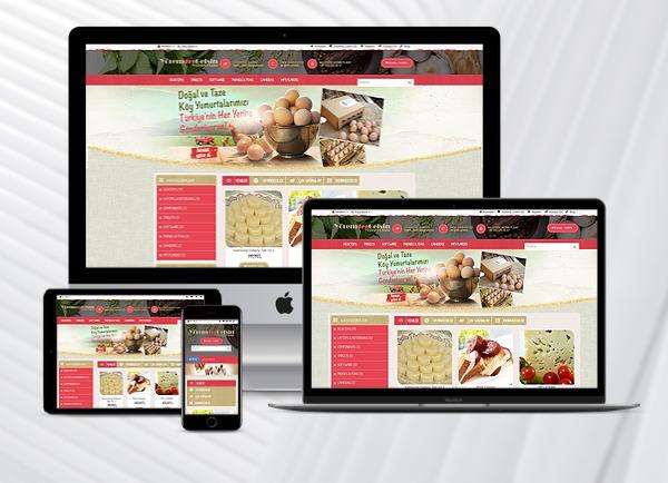 demo-ekrani-e-ticaret-kuruyemis