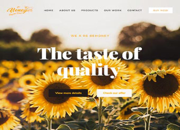 wordpress-organik-urun-tanitim-web-tasarim-bal